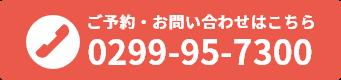 0299-95-7300